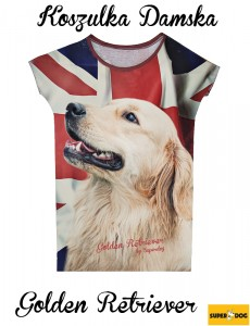 Koszulka full print - golden retriever