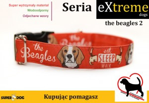 the beagles 2 - red