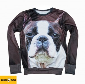 Bluza-Boston terrier